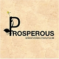 """""""Prosperous"""", Ltd., full service accounting services"""
