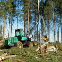 Kvalitatīvi mežsaimniecības darbi