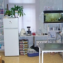 Veterinary clinic, veterinary, Terion