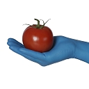 Gloves for food producers