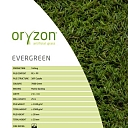 Lawn. Goods for environmental improvement