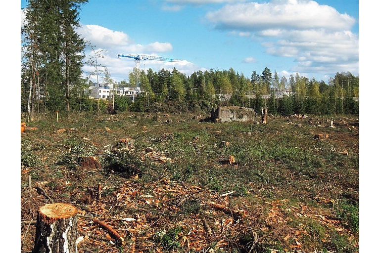 Evaluation of felling areas and forest