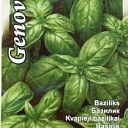 Basil. Vegetable, herb, grass seeds