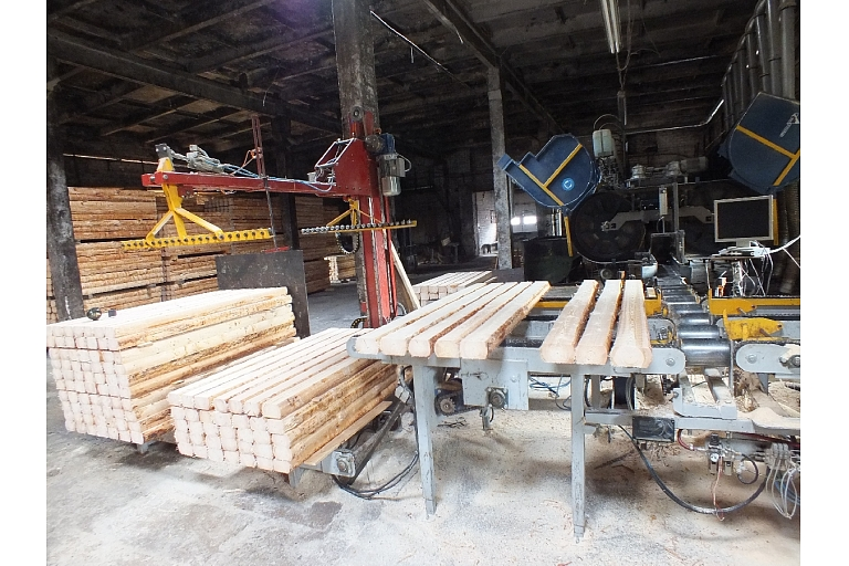 Timber processing automation trading designing Cesis