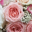 Flowers for celebrations
