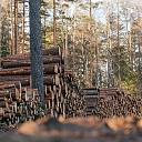 Kokmateriālu un šķeldas pirkšana