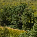 Semināri meža īpašniekiem