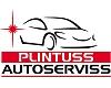 """""""Plintuss"""", SIA, Autoserviss Pārdaugavā, auto krāsošana"""