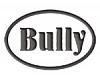 """""""Bully"""" SIA, Gaisa apkures krāsnis"""